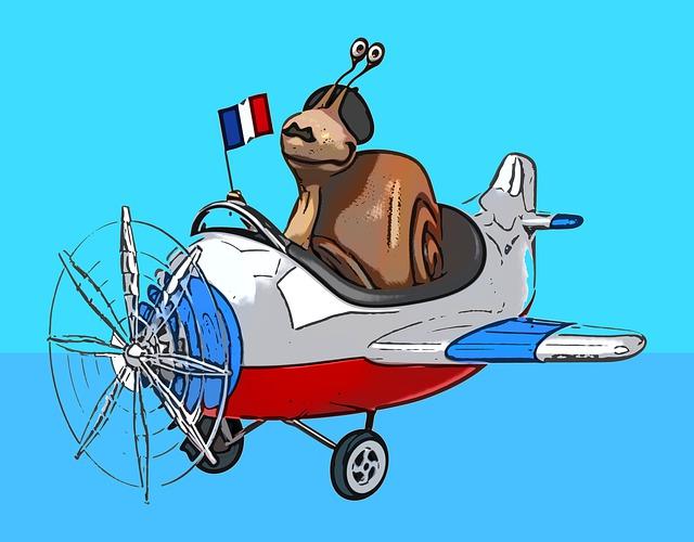 France, pilote, avion