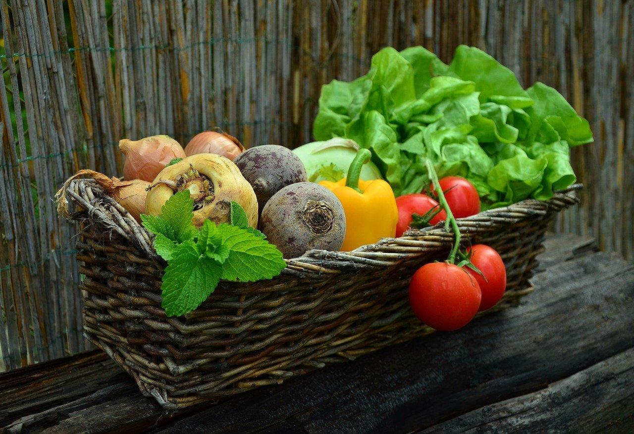 chèques alimentaires, chèque alimentaire, légumes, alimentation, frexit, tiers-monde, nutrition